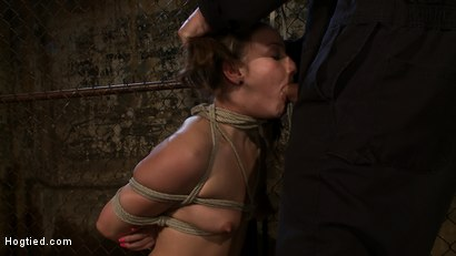 Photo number 8 from Pigtailed girl with thigh highs is bound, made to suck & swallow cock<br>Brutal BJ.  Suck it bitch. shot for Hogtied on Kink.com. Featuring Jessie Cox in hardcore BDSM & Fetish porn.