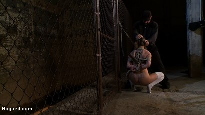 Photo number 10 from Pigtailed girl with thigh highs is bound, made to suck & swallow cock<br>Brutal BJ.  Suck it bitch. shot for Hogtied on Kink.com. Featuring Jessie Cox in hardcore BDSM & Fetish porn.
