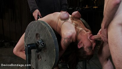 Photo number 3 from If you thought PRINCESS DONNA got FUCKED last update<br> You ain't seen nothing yet! shot for Device Bondage on Kink.com. Featuring James Deen, Princess Donna Dolore and Isis Love in hardcore BDSM & Fetish porn.