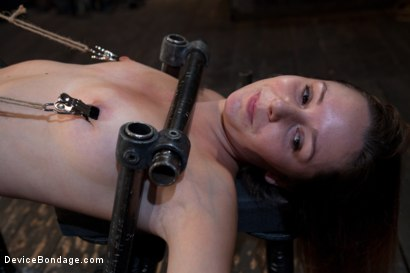 Photo number 8 from How do you get a sweet, shy 19-year-old girl to open up and come out of her shell? shot for Device Bondage on Kink.com. Featuring Sasha in hardcore BDSM & Fetish porn.