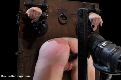 Photo number 13 from Innocent 19 year old first-timer + Alpha = Pure Magic shot for Device Bondage on Kink.com. Featuring Sasha in hardcore BDSM & Fetish porn.