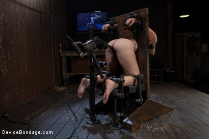 Photo number 1 from Innocent 19 year old first-timer + Alpha = Pure Magic shot for Device Bondage on Kink.com. Featuring Sasha in hardcore BDSM & Fetish porn.