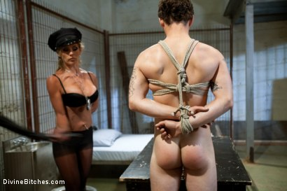 Photo number 5 from Corrupt Bitch Cop shot for Divine Bitches on Kink.com. Featuring Felony and Curt Wooster in hardcore BDSM & Fetish porn.