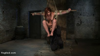 Photo number 10 from 18 Years Old, And In  Way  Over Her Head shot for Hogtied on Kink.com. Featuring Lexi Brooks in hardcore BDSM & Fetish porn.