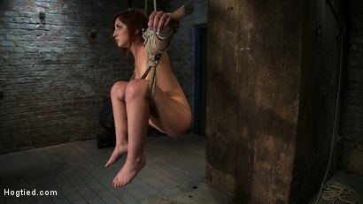 Photo number 13 from 18 Years Old, And In  Way  Over Her Head shot for Hogtied on Kink.com. Featuring Lexi Brooks in hardcore BDSM & Fetish porn.