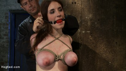 Photo number 3 from Is that Kristen Stewart?<br>18 years old, huge natural tits. shot for Hogtied on Kink.com. Featuring Iona Grace in hardcore BDSM & Fetish porn.