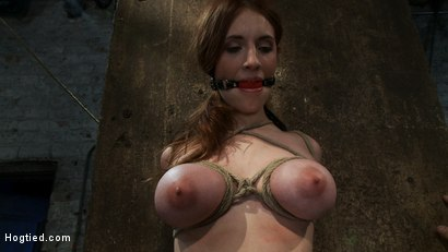 Photo number 4 from Is that Kristen Stewart?   18 years old, huge natural tits. shot for Hogtied on Kink.com. Featuring Iona Grace in hardcore BDSM & Fetish porn.