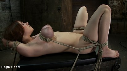 Photo number 14 from 18 years old with huge natural tits is bound, made to cum<br> Big tits brutally tied and punished. shot for Hogtied on Kink.com. Featuring Iona Grace in hardcore BDSM & Fetish porn.