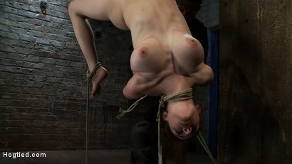 Photo number 3 from 19 yr Old with Huge Tits Suffers in a <br>Catigory5 Suspension, Cums while Upside Down and Helpless shot for Hogtied on Kink.com. Featuring Iona Grace in hardcore BDSM & Fetish porn.