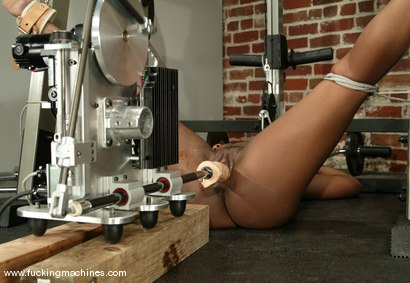 Photo number 9 from Andrea Renee shot for Fucking Machines on Kink.com. Featuring Andrea Renee in hardcore BDSM & Fetish porn.
