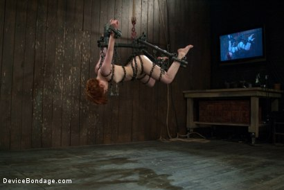 Photo number 12 from Like a fucking wild animal. shot for Device Bondage on Kink.com. Featuring Juliette March in hardcore BDSM & Fetish porn.