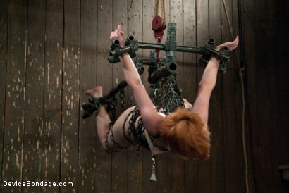 Photo number 13 from Like a fucking wild animal. shot for Device Bondage on Kink.com. Featuring Juliette March in hardcore BDSM & Fetish porn.
