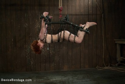 Photo number 5 from Like a fucking wild animal. shot for Device Bondage on Kink.com. Featuring Juliette March in hardcore BDSM & Fetish porn.