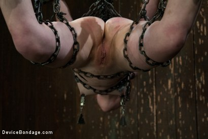 Photo number 8 from Like a fucking wild animal. shot for Device Bondage on Kink.com. Featuring Juliette March in hardcore BDSM & Fetish porn.