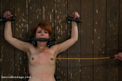Photo number 6 from Machine Fucked Senseless for the Very First Time shot for Device Bondage on Kink.com. Featuring Juliette March in hardcore BDSM & Fetish porn.