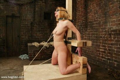 Photo number 3 from Jenni Lee shot for Hogtied on Kink.com. Featuring Jenni Lee in hardcore BDSM & Fetish porn.