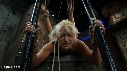 Photo number 11 from We put our Romanian gymnast champion<br>into the Scorpion Tie<br>and make her cum over and over. shot for Hogtied on Kink.com. Featuring Lea Lexis in hardcore BDSM & Fetish porn.