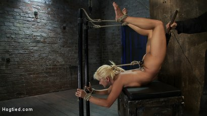 Photo number 7 from We put our Romanian gymnast champion<br>into the Scorpion Tie<br>and make her cum over and over. shot for Hogtied on Kink.com. Featuring Lea Lexis in hardcore BDSM & Fetish porn.